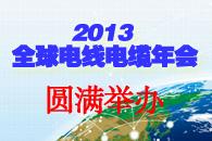 2013全球电线电缆年会圆满举办